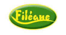 Ob f413f1 fileane 2